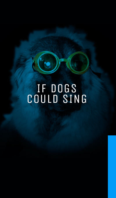If Dogs Could Sing